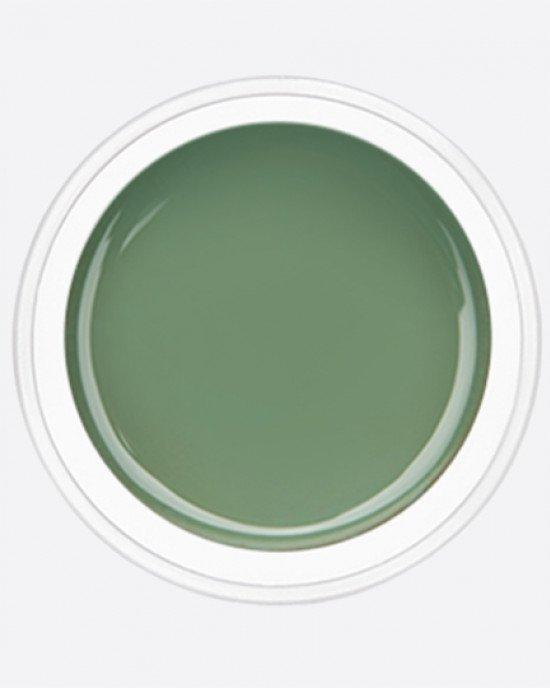 ARTEX artygel 054 аспарагус 10 гр.